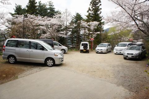 桜 新倉山 駐車場上
