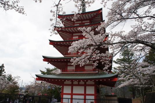 桜 新倉山 忠霊塔