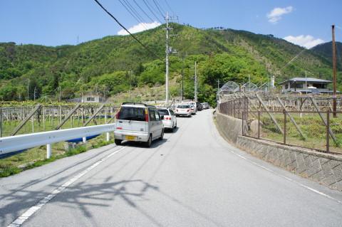 藤切り祭り 駐車場