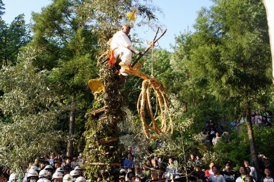 藤切り祭り 斬る所