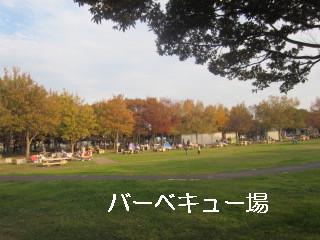 IMG_1460.jpg