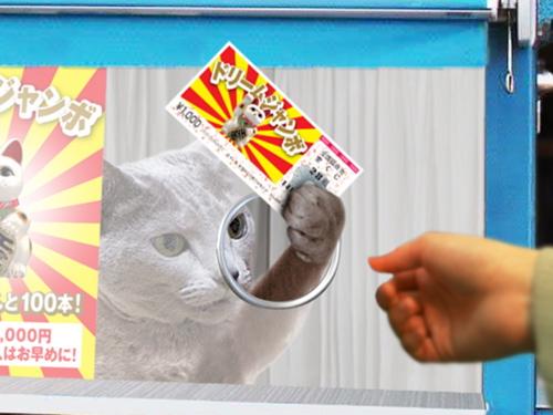 猫くじ26