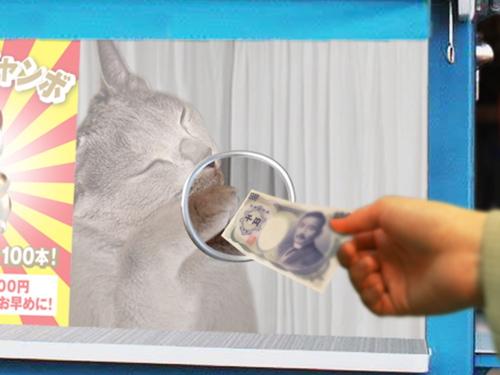 猫くじ25
