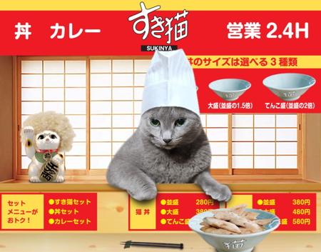 すき猫12
