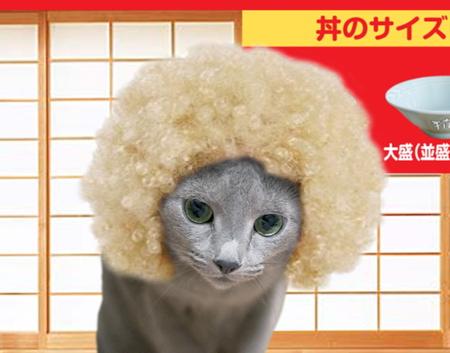 すき猫23