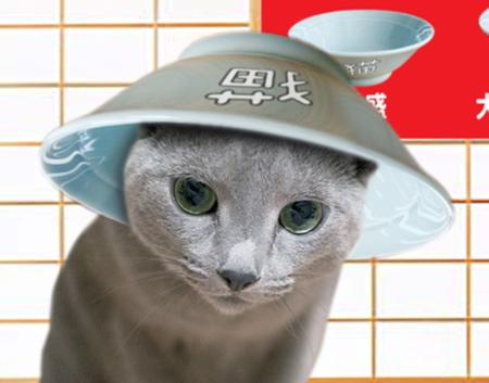 すき猫27