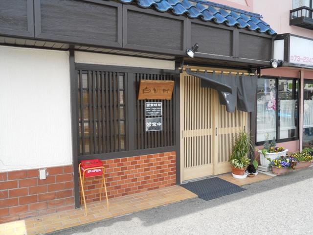 白ひげ5001