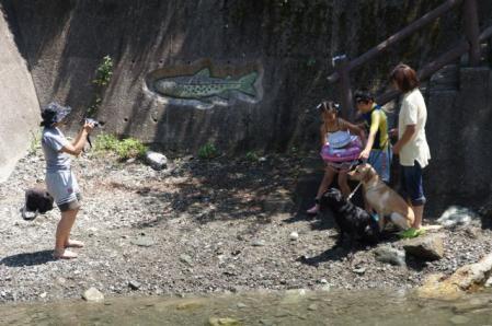 川 キャンプ