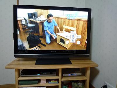 DIYショーテレビ2