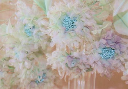 ブログブルー花びら