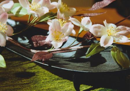 ブログ和装の桜アップ