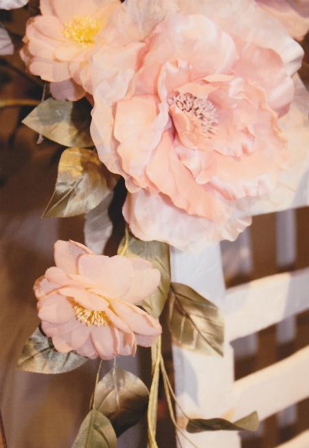 ブログサーモンピンクの薔薇
