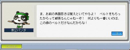 武陸ベルト黄3