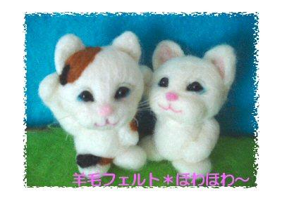 三毛ちゃんと白ちゃん