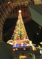 2007/11京都駅のツリー
