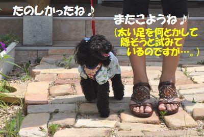DSC_0118_20110730183943.jpg