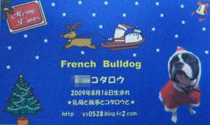 DSC03648_convert_20111221155309.jpg