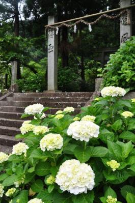 2惣河内神社11.06.15