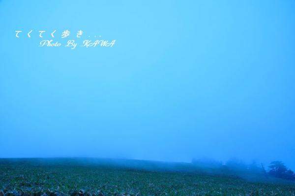 4瓶ヶ森11.06.25