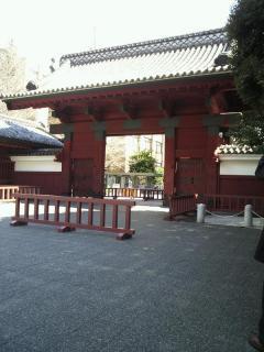 yokohama-ryokou2-6.jpg