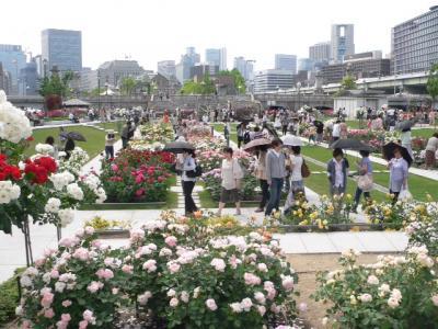 写真キャプション=バラを求めて中の島公園に集まってきた人々