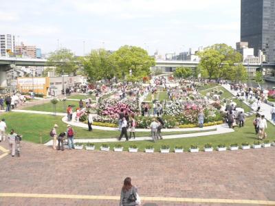 写真キャプション=休日にバラを楽しみに来た多くの人々