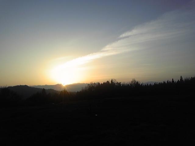 力強い朝陽