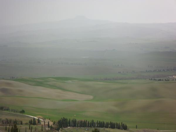 orcia1