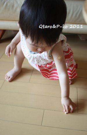 IMG_0051_20110705133227.jpg