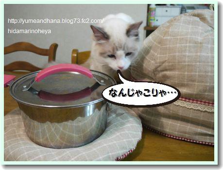 ベルと鍋帽子120419