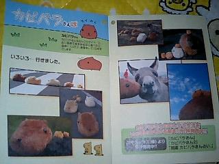 korichan-blog1831.jpg