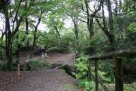 奈良旅行ー怪しい小道の入口