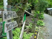 奈良旅行ー怪しい小道