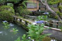 奈良旅行ー新薬師寺庭園紫陽花