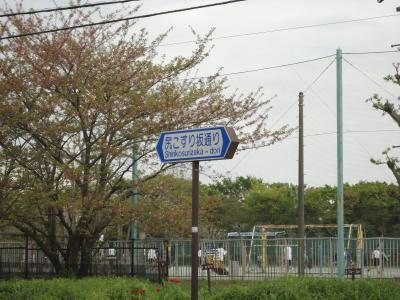 DSC00992.jpg