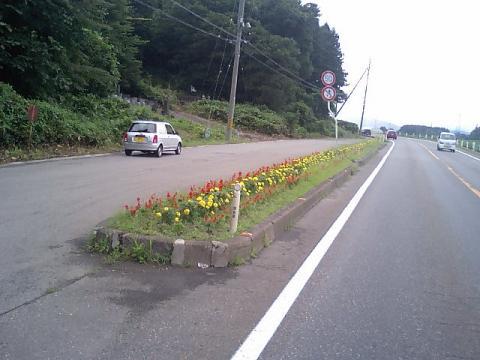 道端の花壇4