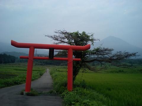 佐良志奈神社4