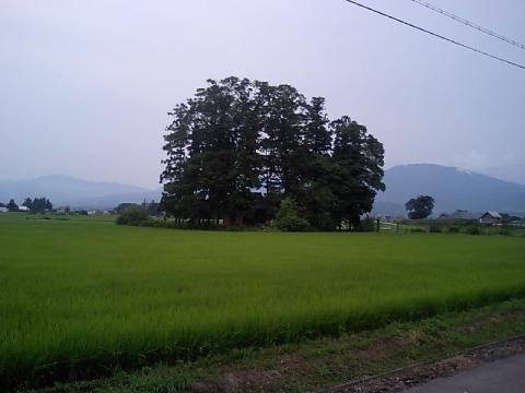 湯川村の神社1