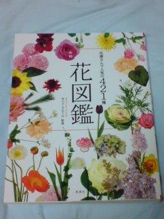 花図鑑421