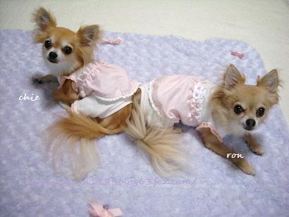 可愛いお洋服chie&ron1