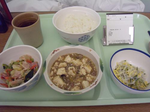 おいしかった四川豆腐夕飯