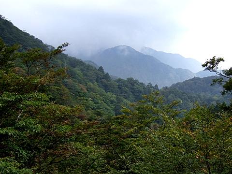 nini-20090927-03.jpg