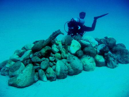 ラウラウビーチの漁礁