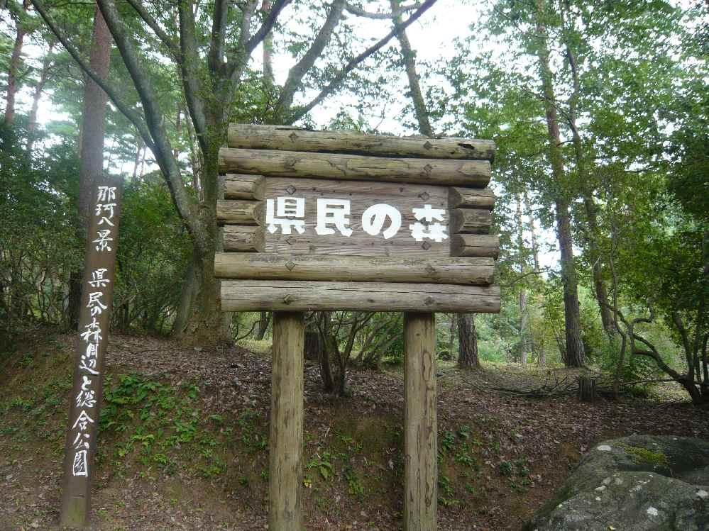 林道散歩は楽しいよ~~~