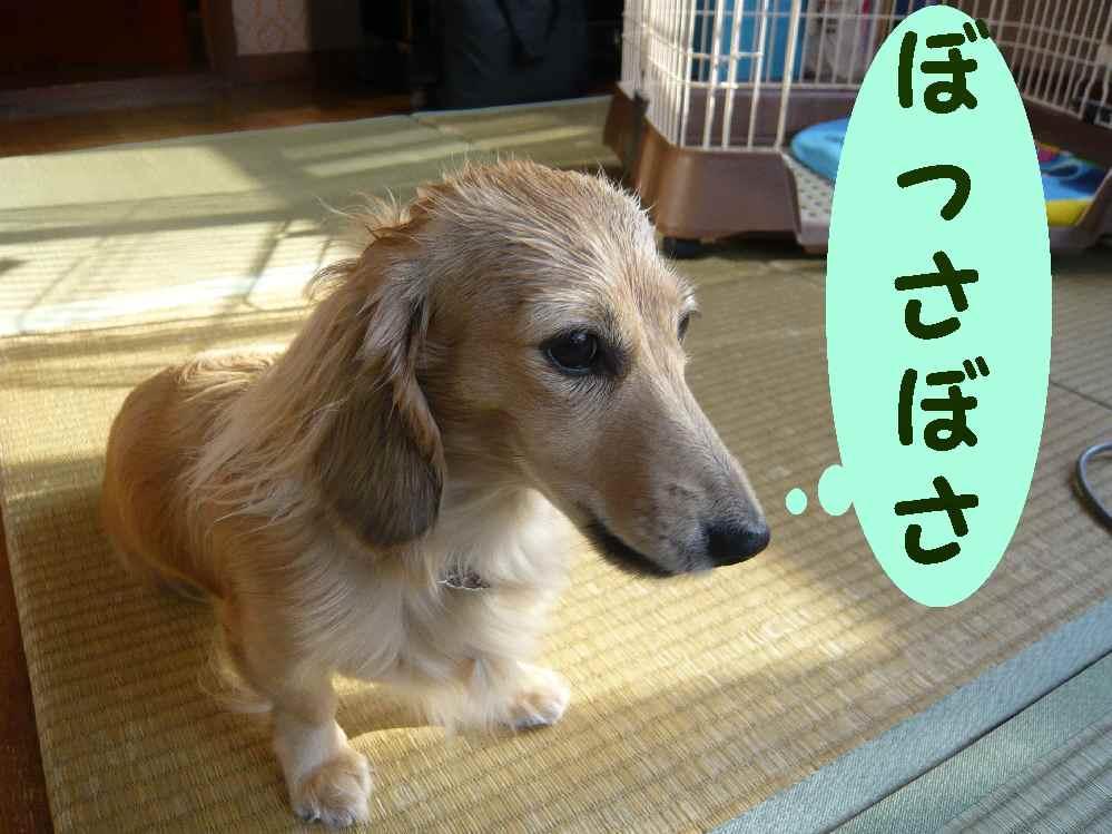 明日も天気にな~れ!