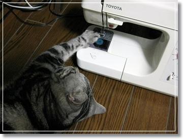 猫コタツ、一年使ってみてる感想♪\(・∀・)/