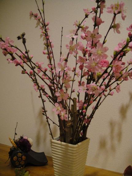Cherry blossom 02.2012