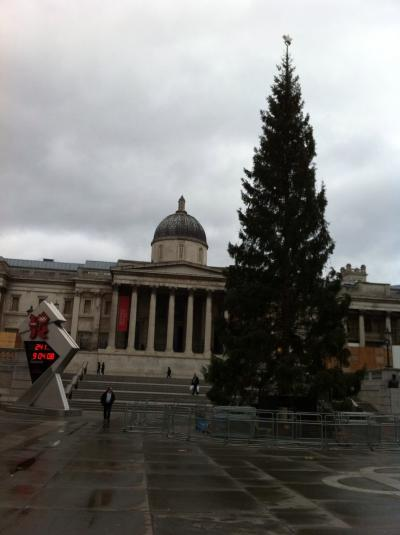 christmas+Tree+in+LONDON_convert_20111201085056.jpeg