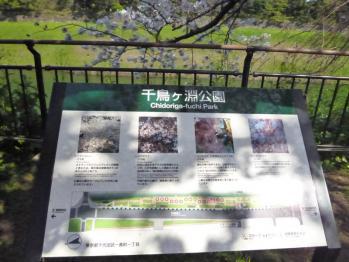20120409_20.jpg