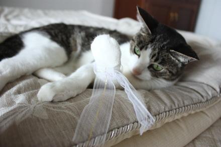 猫の手に結ぶ